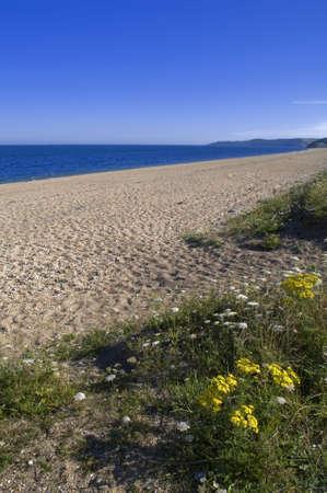 southwest: zand spit op slapton het zuiden hams devon op de Zuid-west coast pad Stockfoto