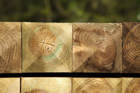 wood and timber in a builders yard photo