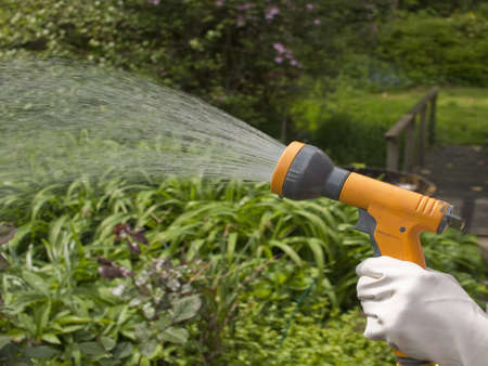 hosepipe: watering plants with a hosepipe in the garden Stock Photo