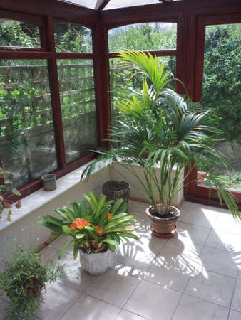 conservatories: conservatory tables chairs plants room in house next to garden
