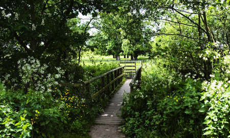 redditch: the valley of the river arrow redditch