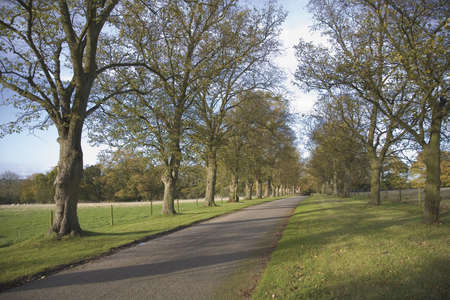 warwickshire: country lane  estate warwickshire midlands england uk Stock Photo