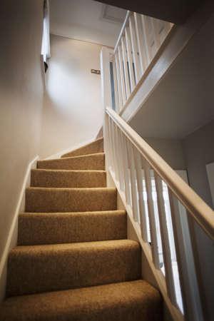 stair: trappen en trap tapijt binnen een nieuw gemoderniseerde huis