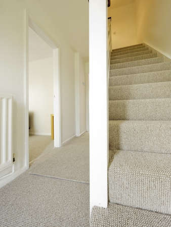 stairs and stair carpet inside a newly modernised house Stock Photo - 10883191