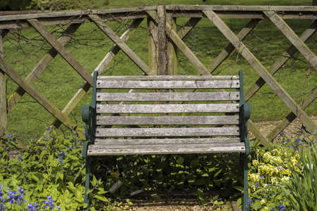 a bench in a country garden photo