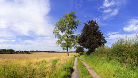 ramble: a footpath and public bridleway through the countryside