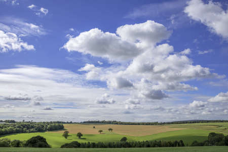 west sussex: south downs, goodwood, west sussex