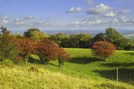 Ackerland Wolken Baume Erde Boden Landwirtschaft Lizenzfreie Fotos