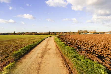grass verge: un paese corsia asfaltata o strada in un ambiente rurale nella campagna