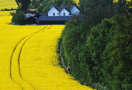 subsidy: farm in the middle of farmland and fields