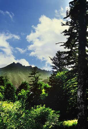 a view of the summit of puy de sancy in the parc naturel regional des volcans d Stock Photo