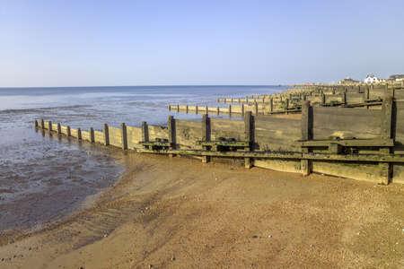 beach shingle: pennelli sulla spiaggia di ghiaia whitstable kent