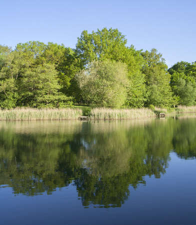 dean: lake in the wye valley and the forest of dean herefordshire england uk