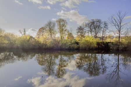 severn: The banks of a river, with bushes and trees.