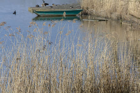 redditch: a wetlands conservation area and nature reserve