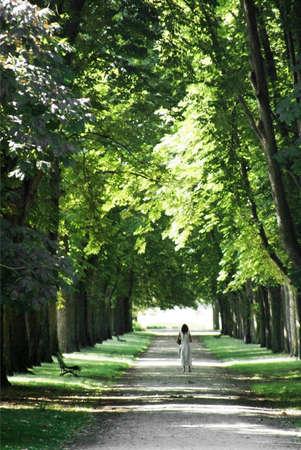 grass verge: un paese corsia asfaltata o strada in un ambiente rurale nelle campagne