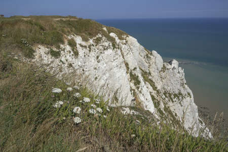 cliffs at beachy head east sussex UK photo