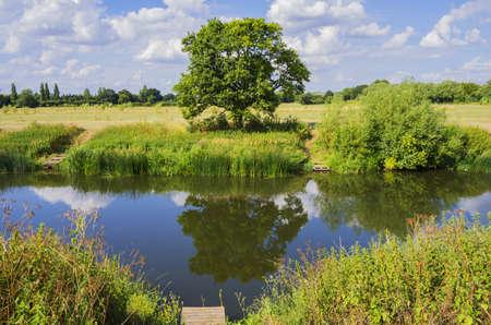 green vegetation: river sunlight green vegetation alongside banks