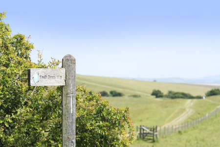 south downs: view from the south downs way footpath, sussex, england uk
