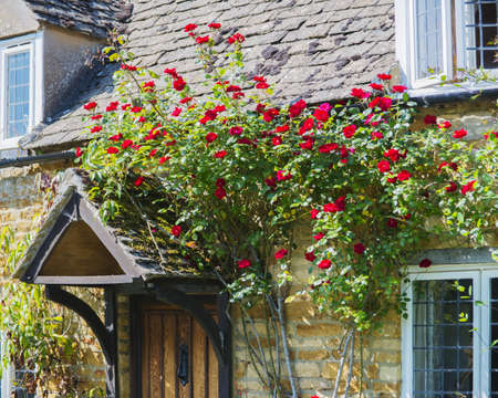 a country cottage with a garden in the oxfordshire cotswolds village of adlestrop photo