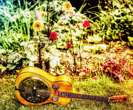 resonator: Guitar