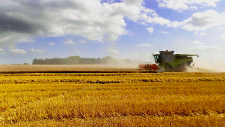 stubble field: a combined harvester in a wheatfield Stock Photo