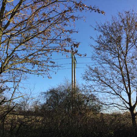 wire: Pylon