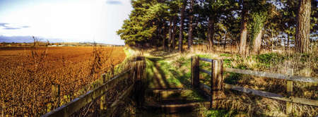 fence: Footpath in the english countrysude