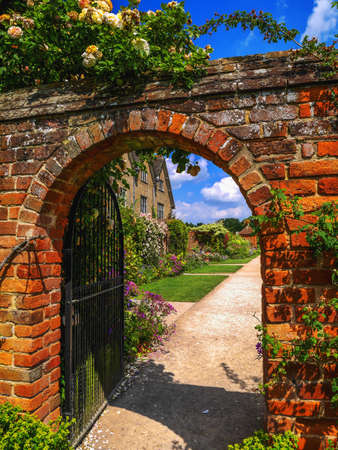 walled: Lush green english walled garden on a summers day