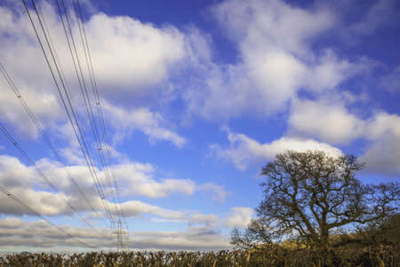 torres el�ctricas: Las torres de electricidad en el campo