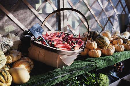 greengrocer: Verdulero Foto de archivo