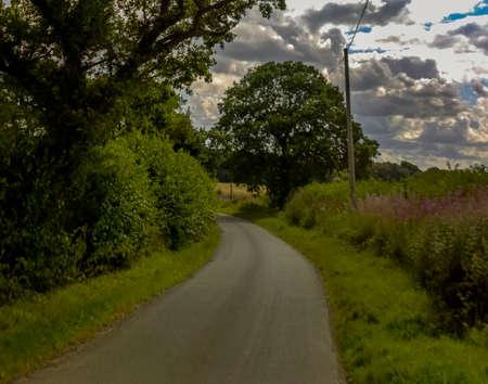 lane: country lane