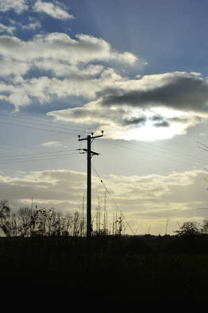 Electricity pylon Imagens - 73099374