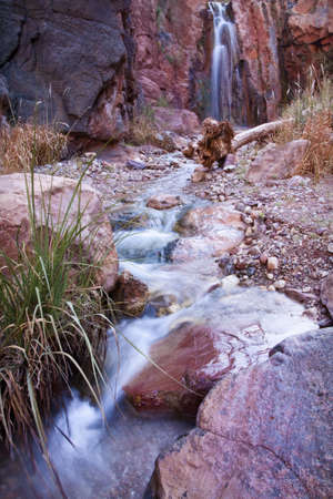 A stream in a rocky high desert canyon at the bottom of Grand Canyon National Park is being fed by a waterfall in the background. Vertical shot.