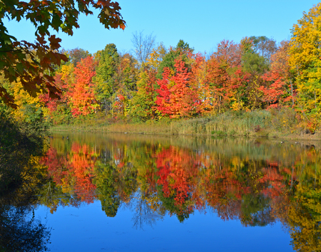 freshwater: Colorful Autumn leaves and a reflective freshwater pond in Northeast Ohio