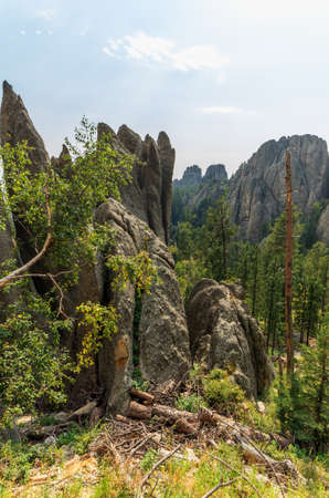 Needles Highway in the Black Hills of South Dakota, near Mount Rushmore National Monument Stock Photo
