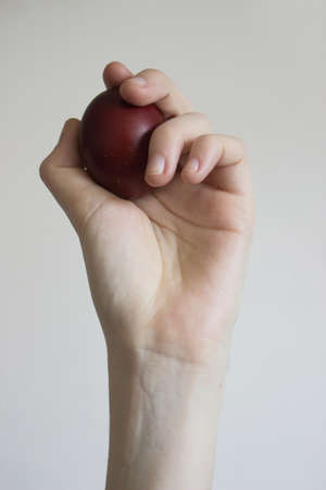 Unrecognizable woman hand holding up an egg. Stock fotó