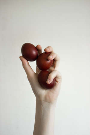 Unrecognizable woman hand holding up for eggs. Stock fotó