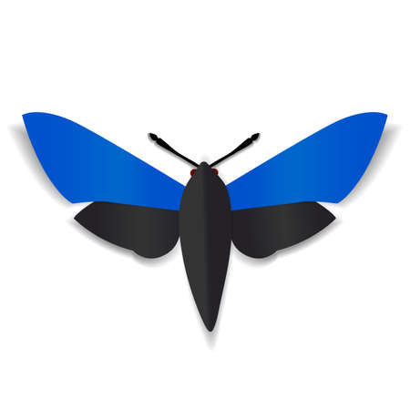 red eyes: A black and blue paper butterfly with dark red eyes.