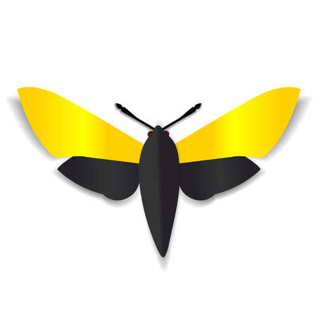red eyes: A black and yellow paper butterfly with dark red eyes.