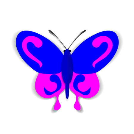 youthful: A blue and pink paper butterfly with ornaments.