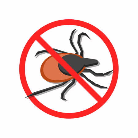 The protection against mites. The illustration shows a dangerous mite. This is a vector image. Illustration