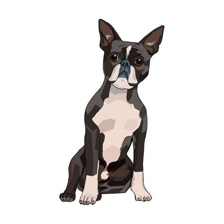 The kind and cute dog illustration. This is a vector illustration. it can be used for t-shirts books and for other design projects.