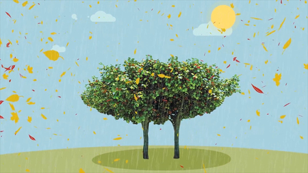 Four season tree and waiting money animation. A lot of money from tree animation. Four season tree. Four seasons for a lonely tree HD Stock Photo