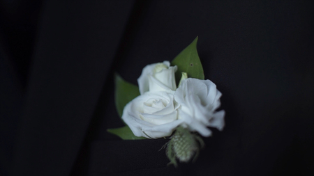 White flower in his jacket pocket closeup groom boutonniere stock stock photo white flower in his jacket pocket closeup groom boutonniere adjusts his hand in a jacket pocket stylish and classic groom and the details of mightylinksfo