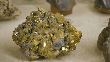 combustible: Samples of rock or mineral rocks, which are represented in the Museum of Geology presented in a single copy.