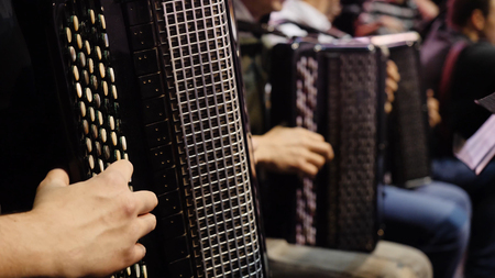 The musician playing the accordion. Close-up, musicians playing the accordion. Group of musicians playing the accordion