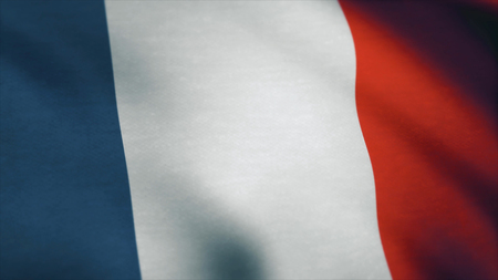 France Flag - looping, waving, A beautiful finish looping flag animation of France. 写真素材 - 100412784
