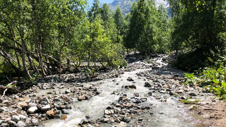 Cold mountain river with raging stream. View of the raging river in the forest