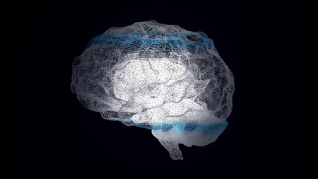 Human white brain on black, science anatomy background. The human brain is like a hologram. Plexus. White rotating human brain on a black background. Medicine and Science. Loop animation